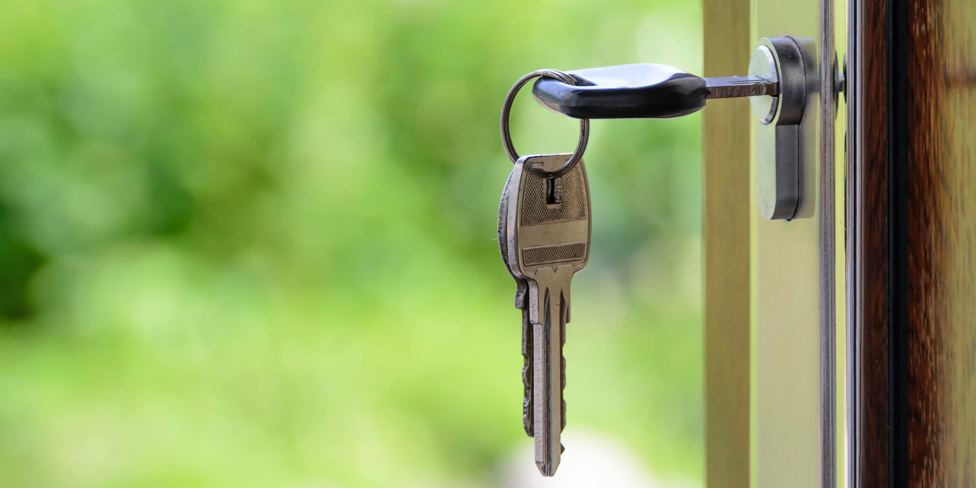 5 Things You Need To Know About Right To Rent
