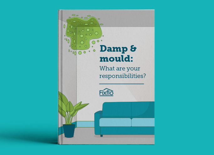 Damp and Mould: What are Your Responsibilities?