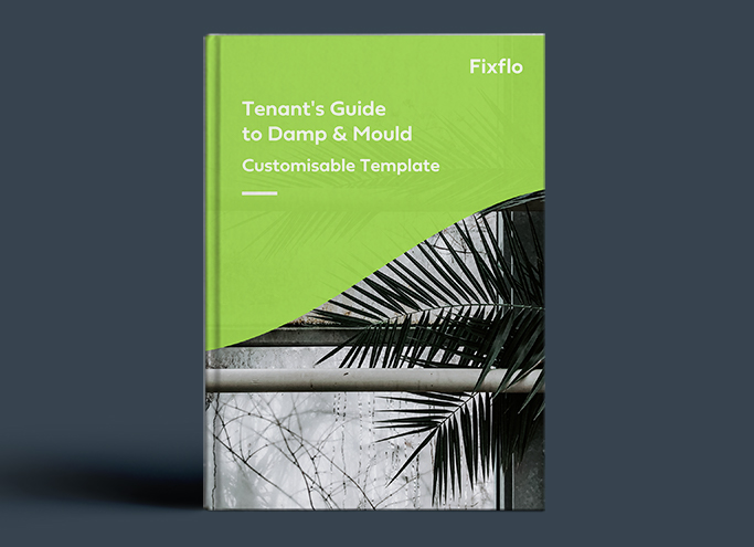 Customisable Flyer: Tenant's Guide to Damp & Mould